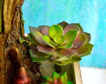 """Artificial Succulent Pick ~ Purple, Pink & Green Echeveria Rosette ~ 4"""" wide with pick stands about 5 inches tall ~ Fairy Garden Plants"""