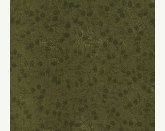 20 % off thru 7/4 moda fabric by 1/2 yard Kansas Troubles Quilters Favorites Ii-small flowers on dark green tone on tone 9194-19