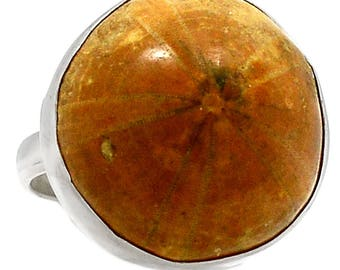 Genuine Fossil Sea Urchin Ring in Sterling Silver sz 9.5