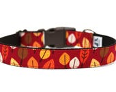 "Autumn Leaves Dog Collar 1"" Fall Dog Collar Autumn Dog Collar"