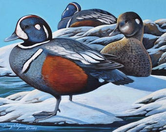 Harlequin Ducks 11 x 14 Original Acrylic Painting Birds Rocks Ocean by artist Doug Walpus