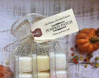 Pumpkin Patch wax tart gift set pure soy and beeswax melters fall candles clamshell tarts wax cubes pumpkin fragrances Montana made candles