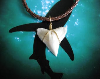 "Shark Tooth Necklace, Modern day Bull Shark tooth, Braided leather cord 18"", Brass wire wrapped"