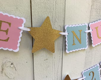 Twinkle Twinkle Little Star Banner/ Nursery Surprise/ Gender Reveal/ Date Banner/ Pink/ Blue/ Gold/ Future Nursery/ 2018/ Baby Shower
