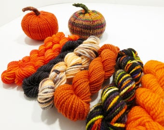 Fall Delight Knit Kit - Sock yarn Mini skeins and pumpkin pattern