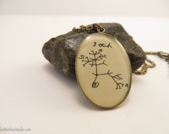 With chain extender: Evolution diagram necklace, Darwin, Origin of Species,  phylogenetic tree, evolution, grad gift (Style no. NBX1003)