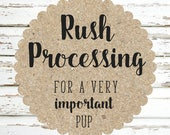 Rush Processing for 1224378919