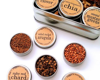 DIY Microgreens Maggie's BESTSELLERS Seed Kit Indoor Garden - Organic Vegan Gourmet Microgreens Seeds in Reusable Tin Gift Box