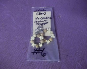 real animal boa snake bone vertebrate picture jasper stone bead jewelry earring bone taxidermy hand made