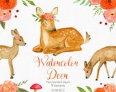 Baby deer, watercolor clipart, watercolor deer, forest animals, woodland animals, woodland nursery, woodland creatures, baby animal clipart