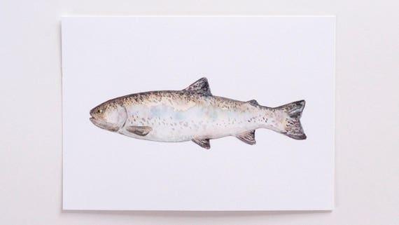 Original 5x7 Watercolor Fish Painting