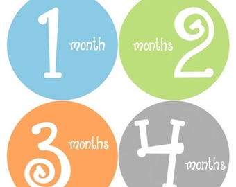 Monthly Stickers Monthly Baby Stickers Baby Month Milestone Stickers Baby Month Stickers Month to Month Bodysuit Stickers Shower Gift 185