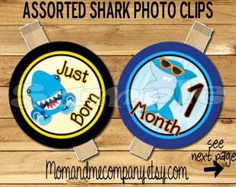 Shark Baby Boy First year photo clip banner newborn to 12 month first birthday month banner first year banner Shark birthday RIBBON INCLD