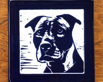 Diamong Pitbull Ceramic Tile Blue