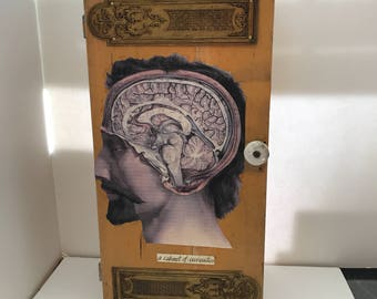 "Original Art Mixed-media Assemblage ""A Cabinet of Curiosities"" by Artist Debbie Siday"