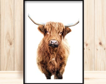 Cow Prints, Farm Animal Prints, Hairy Cow Wall Art, Highland Cow Printable, Farm Nursery Download, Animal Portrait, Highland Cow Photography