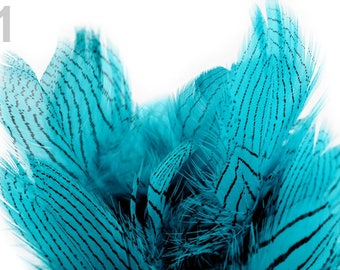 01 - Turquoise striped feathers 4 to 12 cm