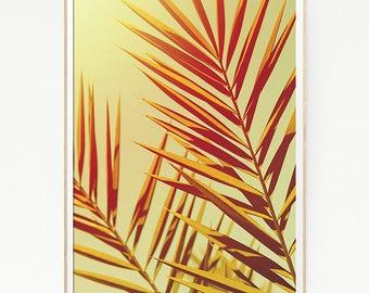 Printable Palm Leaf Trees Wall Decor Print Poster Tropical Beach Retro Vintage Colour Photo Nature Sea Minimalist Pink Sky Leaf Sun 1023
