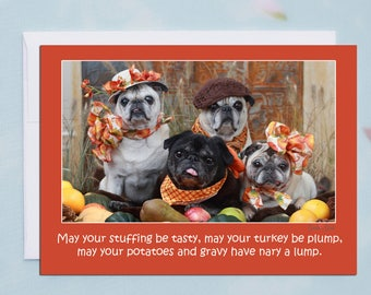 Box of 10 - Funny Thanksgiving Card - May Your Stuffing Be Tasty - Pug Card -5x7