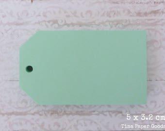 25 LIGHT GREEN Tags 5x3.2 cm