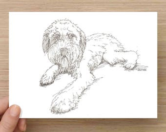 Custom Drawn Pet Portrait from Photograph - Pen and Ink, Commission, 5x7, 8x10, 11x14, Request, Personalized, Dog, Cat, Animal, Pet