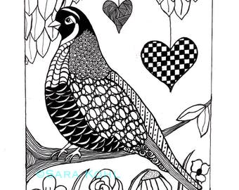 The Quail Zentangle Print