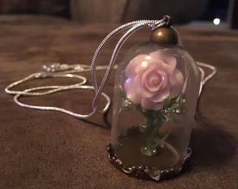 Enchanted Fairy Rose