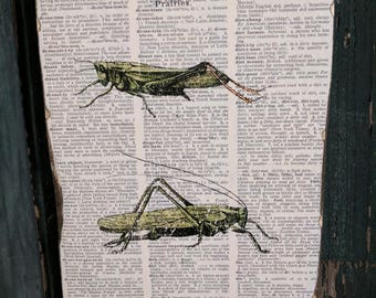 Grasshopper Wood Art
