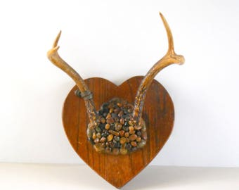 Real Deer Antlers • Wood Block and Stone Mounted Antlers • 4 Point Folk Art Antlers • Natural Antlers