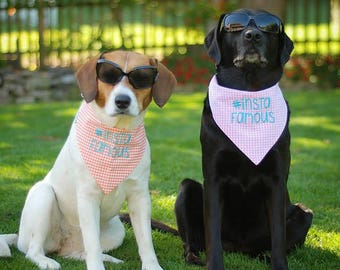 Everyday Dog Bandanas