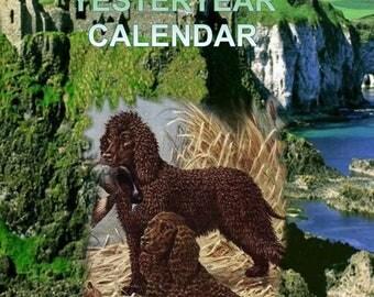 SALE last one New 2018 IRISH WATER Spaniel  Dog yesteryear calendar freepost inland uk with uk show dates