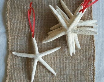 Starfish Ornament, 3-4 IN Starfish Christmas Ornament, CHOOSE your FINISH! Beach Christmas Ornament, Star Christmas Decor