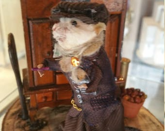 Peaky Blinder Taxidermy  Mouse in the Garrison Pub