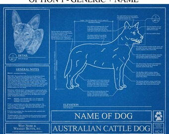 Personalized Australian Cattle Dog Blueprint / Australian Cattle Dog Art / Australian Cattle Dog Gift / Australian Cattle Dog Print
