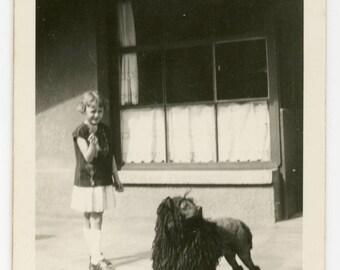 Vintage photo 'Puli-Poodle' dog and girl, funny odd awkward weird dog, pet, canine children kids infant, young girl snapshot vernacular