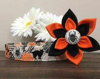 Dog collar, halloween dog collar, orange halloween dog collar, orange dog collar, ghost dog collar, flower , collar flower, dog flower