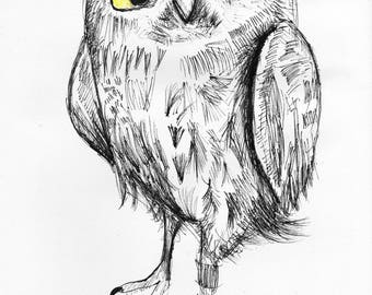 Owl, Animal Art Print, Ink Illustration