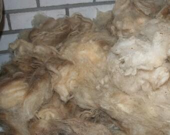 Schoonebeker raw fleece 3.3kg/7.27lbs