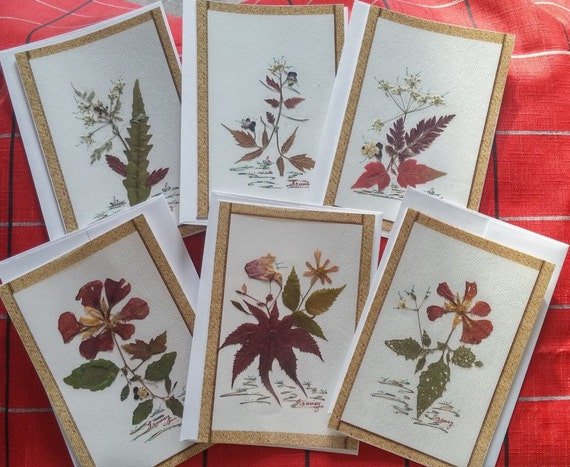 6 unique greeting cards is handmade/discount 30%/Fleurs dried fields/card for birthday/mother's day - C-FM-HTF