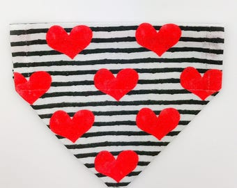 """Over the collar (slide on)  Pet Bandana - Size EXTRA SMALL - """"Read Between The Lines""""  pet bandana"""