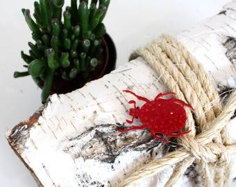 Beetle Brooch - Laser Cut Beetle - Acrylic Brooch Beetle - Beetle Pin - Beetle - Insects - Plexiglas - Handmade - Barnaul