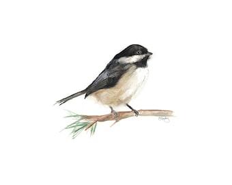 Sweet Little Chickadee - Watercolor Print