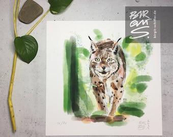 Lynx – Wildcat on Velvet Paws
