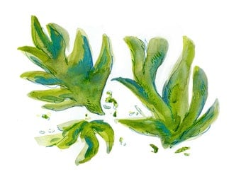 VERT - S - Print, Botanical, Art Print, Wall Print