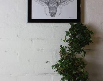 Black and White Elephant Print