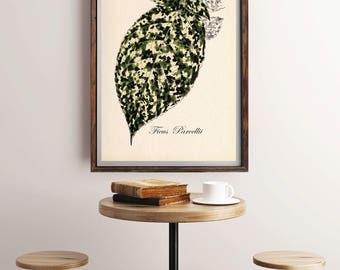 Ficus Plants, Vintage Botanical Print, Ficus Illustration Print, Ficus Parcellii, Antique Botanical Print, Floral Decor, Antique Color Print
