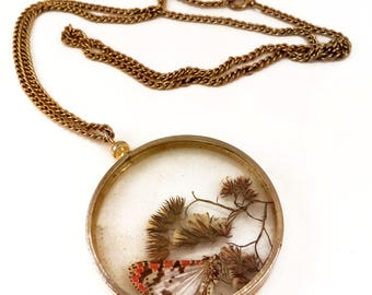 Vintage 70s Real Butterfly / Moth Specimen Necklace // 1970s // insects // entomology // bugs // insect // boho // chain // hippie // nature