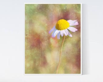 Yellow pink wall art - Daisy prints - Meadow flower - Flowers for wall, PRINTABLE, pink, yellow, daisy, floral, wall art, for bedroom, decor