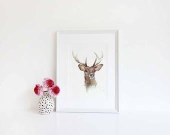 Watercolour Deer Print
