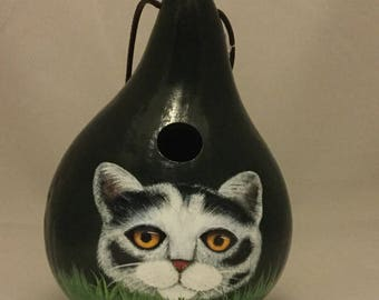 Painted Black and White Cat Gourd Birdhouse with Amber Eyes